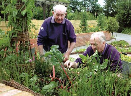 Thrive un 39 impresa che prospera - Foto di giardini privati ...