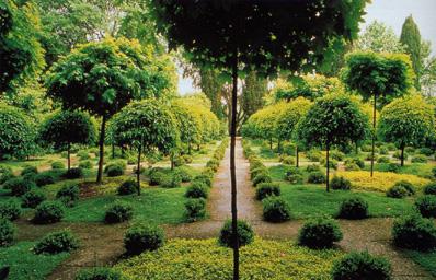 Russel page alla landriana - Giardino degli aranci frattamaggiore ...